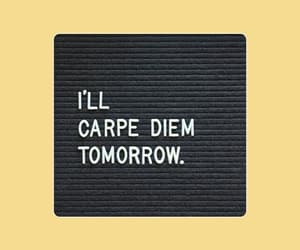 carpe diem, quote, and yellow background image