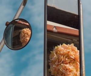 boho, contemporary, and flower image