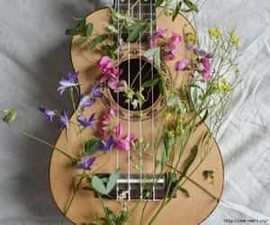 flowers, guitar, and music image