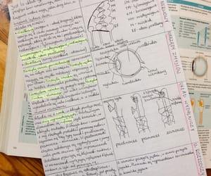 biology, learning, and notes image