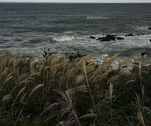 ocean, nature, and inspiration image