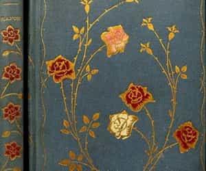 aesthetic, books, and edgar allan poe image