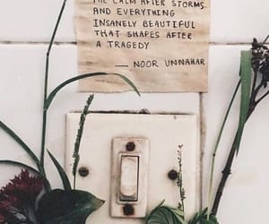 plants, quotes, and love image