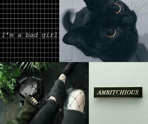 aesthetic, bad girl, and draco malfoy image