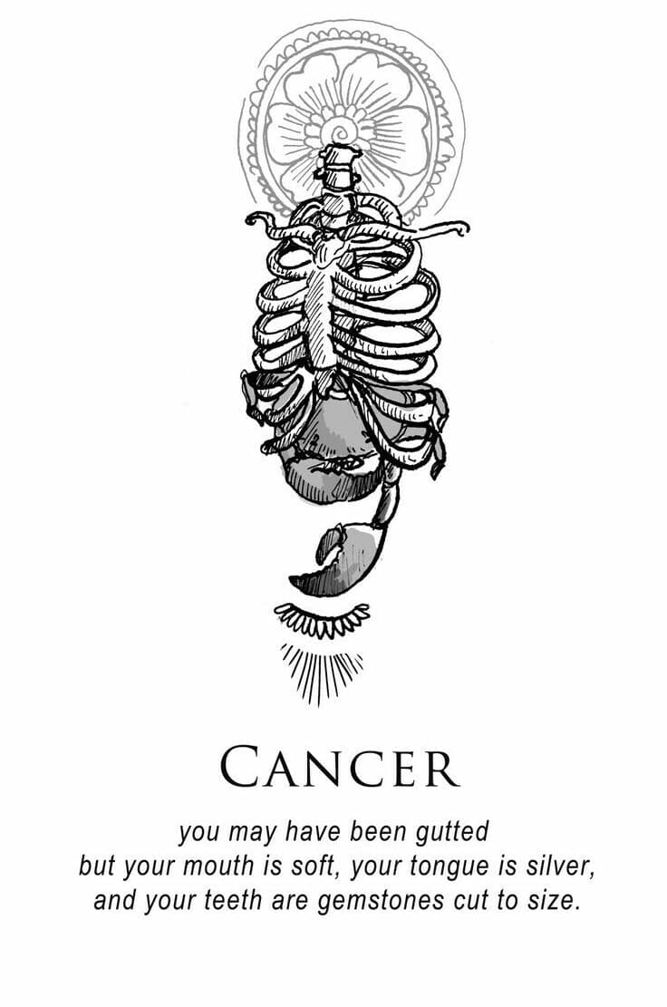 104 Images About Cancer On We Heart It See More About Cancer Gemini And Virgo