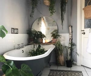 bathroom, decor, and plants image