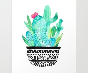 cacti, illustration, and illustrations image