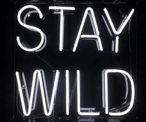 light, room ideas, and stay wild image
