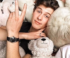 shawn mendes, singer, and bear image