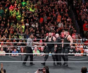 wwe, authors of pain, and bobby fish image