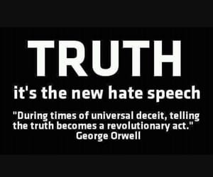 quote, George Orwell, and a sad future truth image