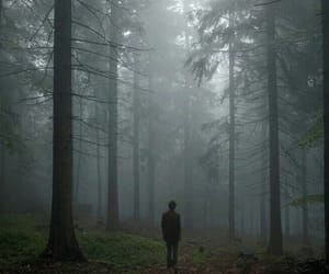 alone, forest, and boy image