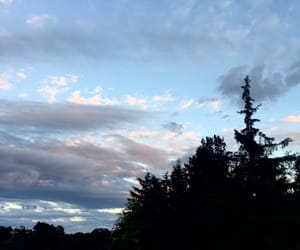 cielo, clouds, and forest image