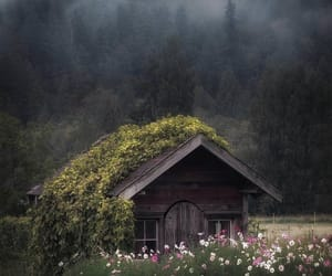 nature, house, and flowers image