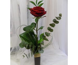 flowers, valentines day, and valentines day gift image