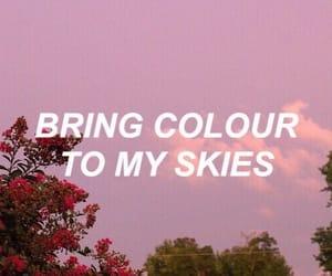 quotes, Lyrics, and pink image