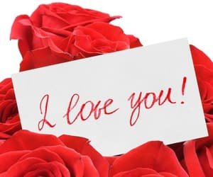 I Love You, red, and Valentine's Day image
