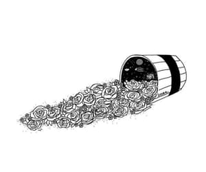black and white, bucket, and flowers image
