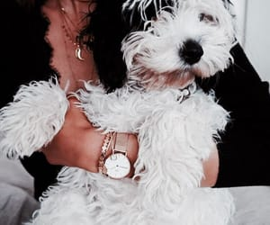 accessories, aesthetic, and fluffy image