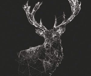 wallpaper, black, and deer image
