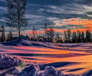landscape, nature, and winter image