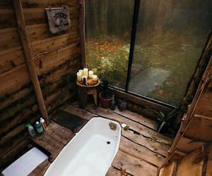 bathroom, forest, and nature image