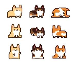 corgi, dog, and kawaii image