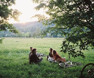 friends, nature, and summer image