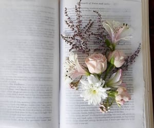 artsy, book, and pressed flowers image