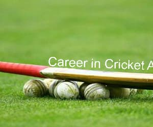 sport, career planning, and cricket career image
