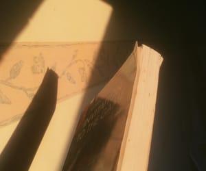 books, literature, and sunlight image
