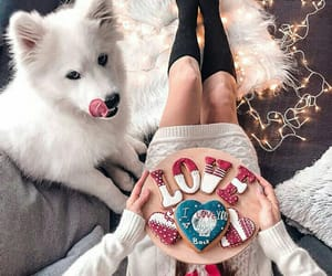 Cookies, puppy, and romantic image