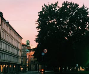 morning, oslo, and schous image