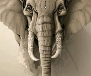 arte, dibujo, and elefant image