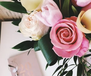 february, flowers, and happy image