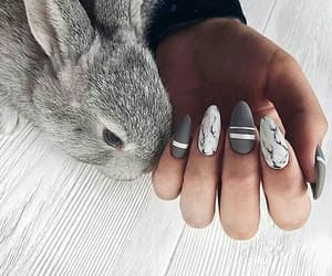 fashion inspo, girly inspiration, and animals cute image