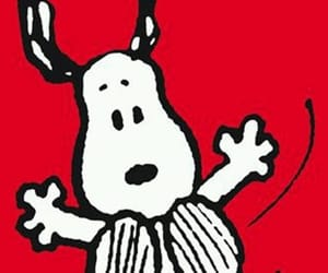 background, peanuts, and red image
