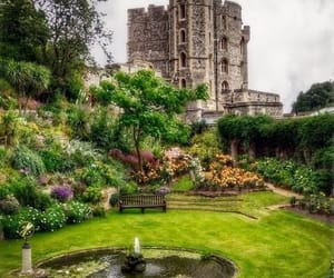 beautiful, trees, and windsor castle image