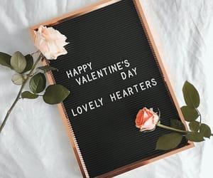 rose, valentine, and Valentine's Day image