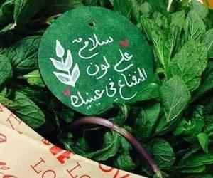 ﻋﺮﺑﻲ and عيون+خضراء image