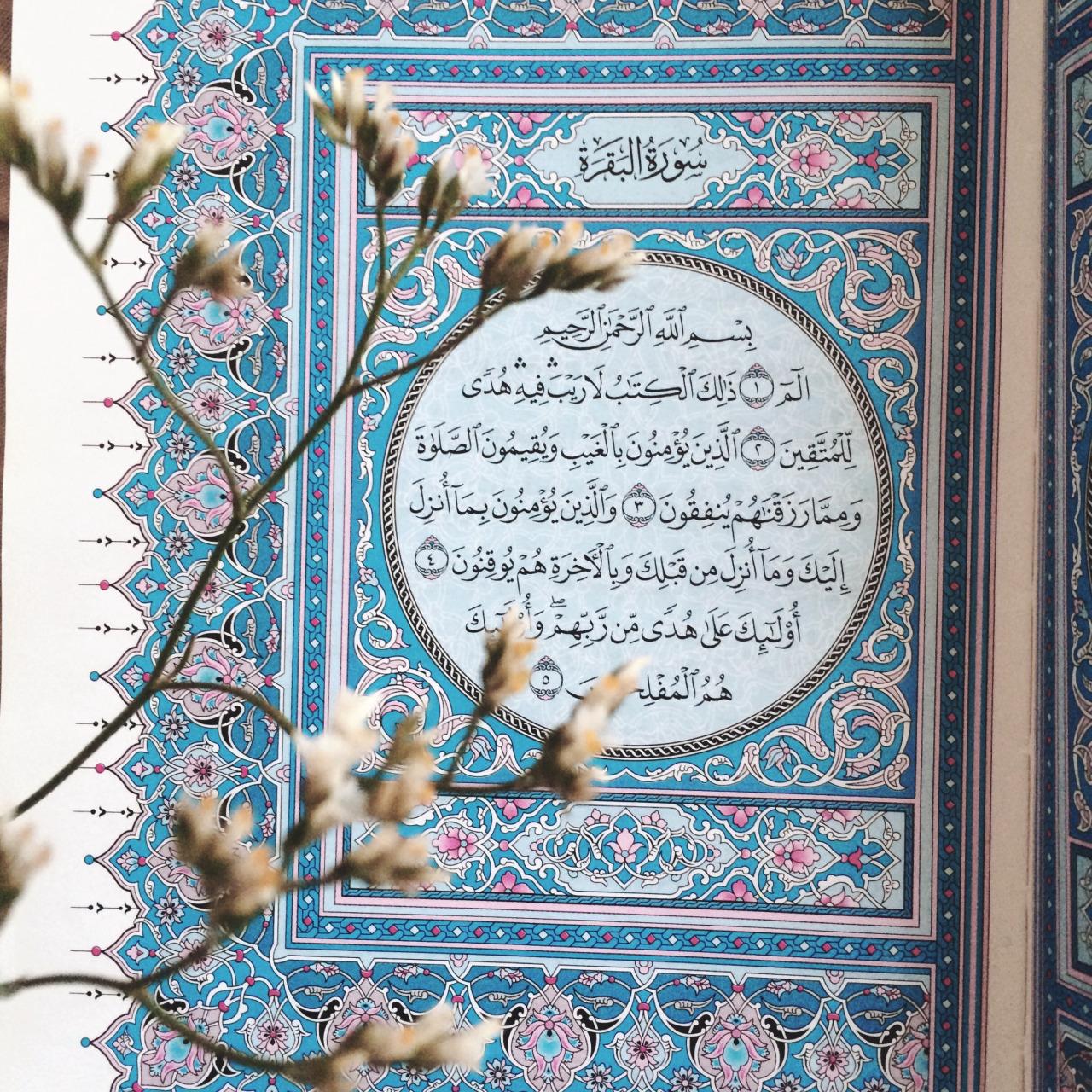 quran, islamic, and ﻋﺮﺑﻲ image