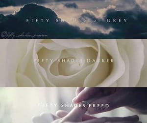flower, movie, and fifty shades of grey image