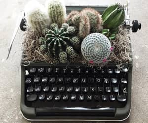 cactus, decor, and decorations image