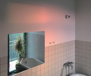 bathroom and plant image