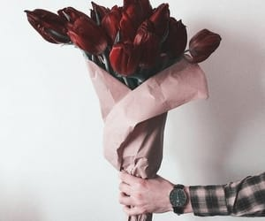 flowers, roses, and tumblr image