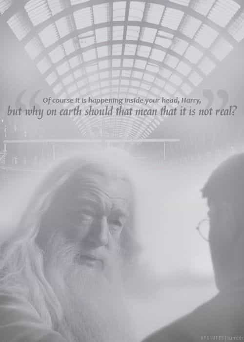 harry potter, wise, and dumbledore image