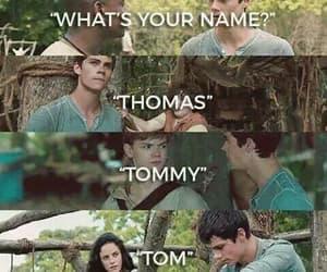 thomas, teresa, and the maze runner image