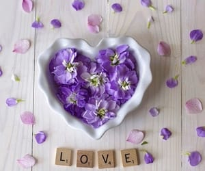 flores, heart, and lilac image