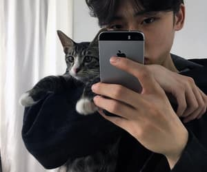 cat, ulzzang, and boy image