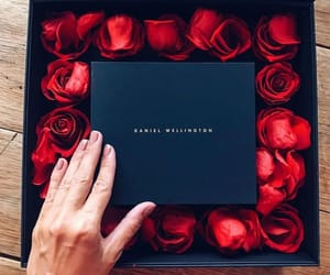 black, box, and gift image